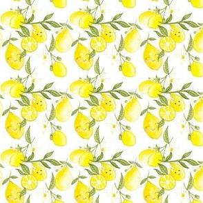 Disty-Lemonade Party