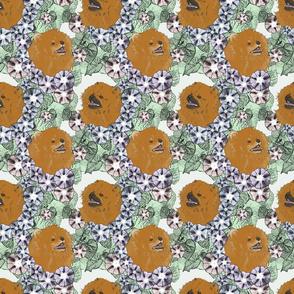 Floral Pomeranian portraits A