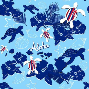 Aloha_Hawaii
