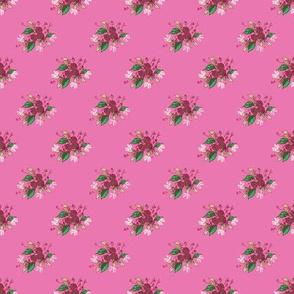 Roses in deep pink