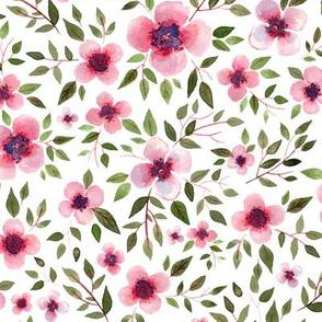 pink blooming flowers