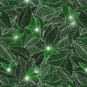 green fairy lanterns