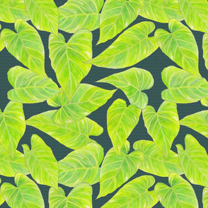 jungle leaves on green