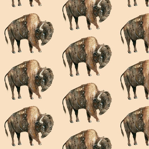 Buffalo on Tan