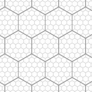 00650807 : hex graph 5