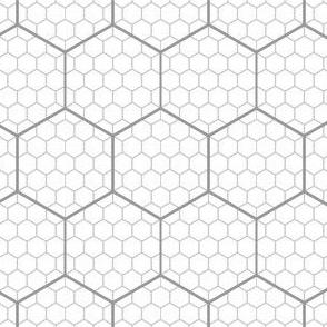 00650807 : hex graph 5