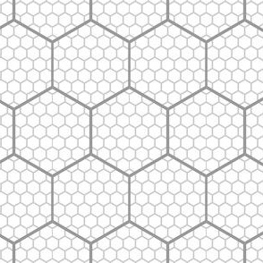00650814 : hex graph 6