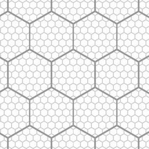 00650814 : hex graph 6
