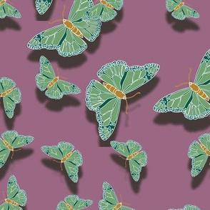 Butterfly Motif 7