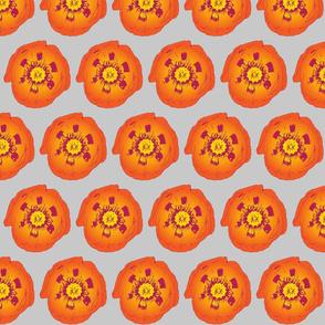 Poppy Flower Gray & Orange