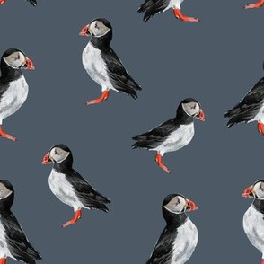 Puffin Party - Smaller Version on Blue