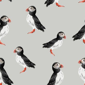 Puffin Party - Smaller Scale on Light Grey