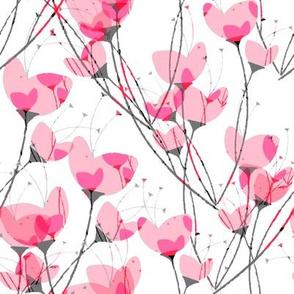 Pink Primrose White Background
