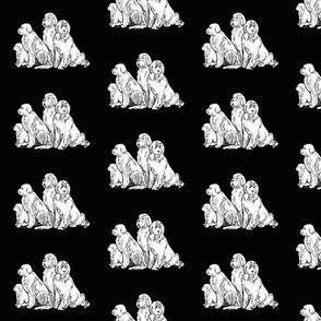 smaller pattern  Newfoundland Dog Group