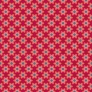 ANNA red turqoise