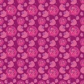 ESMARALDA pink