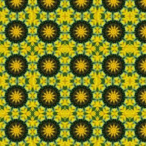 SunflowerPinwheels 0073