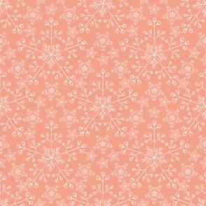 Chalk Snowflakes Snowflakes on Coral