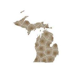 "Michigan silhouette - 6"" petoskey"