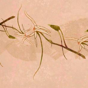 Wild Orchids-magenta stripe