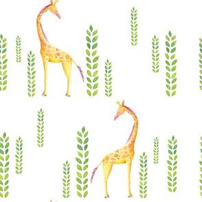 Standing tall - hand painted giraffe illustration