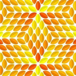 06523827 : R6lens4 : golden foliage