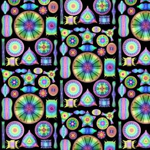Ernst Haeckel Diatomea Diatoms
