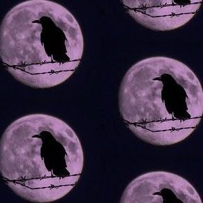 Purple Raven Moon