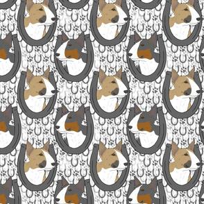 Miniature colored Bull Terrier horseshoe portraits B