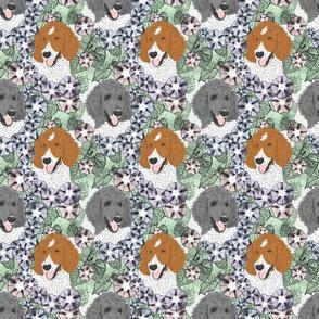 Floral Parti colored Standard Poodle portraits B