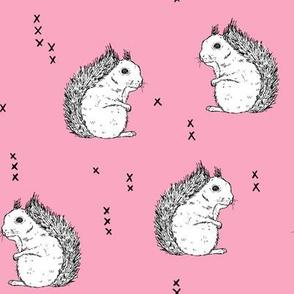 Squirrels_lightpink