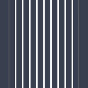 The New Stripe . Lapis Blue White Vertical