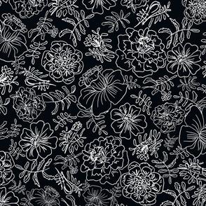 Marigolds_white on black