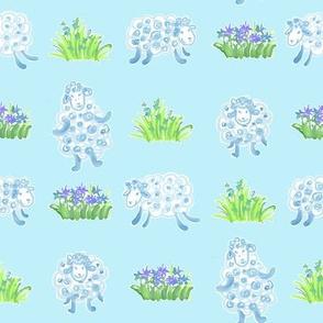 sheep on light blue