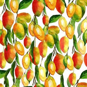 mangopattern