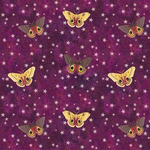 io moths on purple