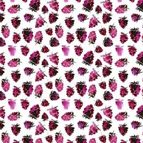 Watercolor blackberries mini