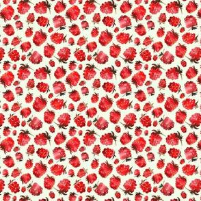 Watercolor raspberries mini