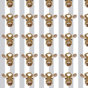 cows on stripes