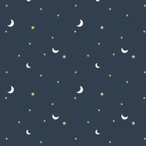Garden Cats Night Sky