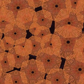 Pinwheels In Space Orange Black Medium