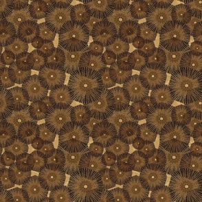 brown_brown pinwheels_in_space_ 9x9