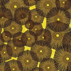 Pinwheels In Space Brown Yellow Medium
