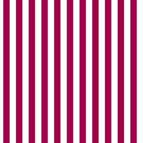 medium width pink stripe