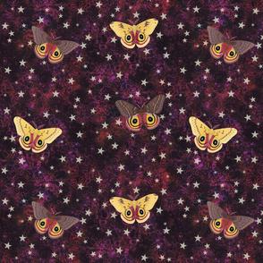 io moths on black