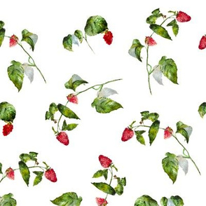 Watercolor raspberry pattern