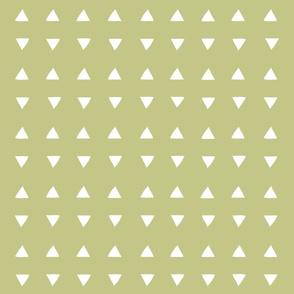 Tiny Triangles - Lichen