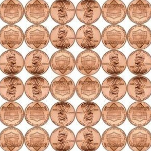 """2"""" Find a Penny Pick It Up"""