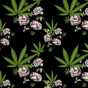 Cannababe Cannabis Floral