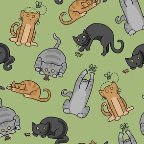 Cats N Bugs